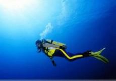 Красноярские спортсмены примут участие в финале Кубка мира по подводному спорту